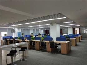 长沙市知识产权服务平台设计与装修